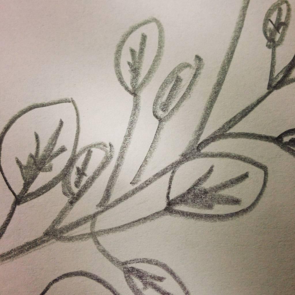 Tousette hojas innovando nueva colección 3