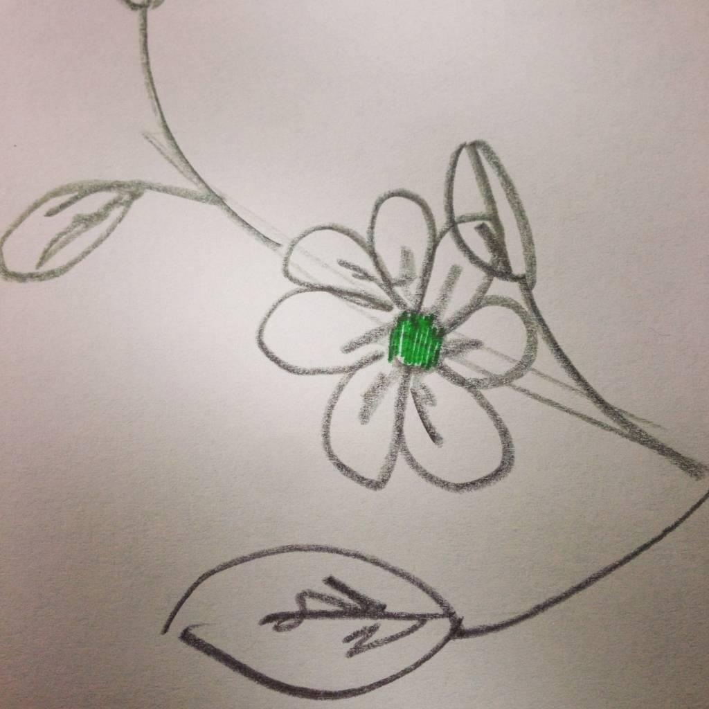 Tousette hojas innovando nueva colección 4